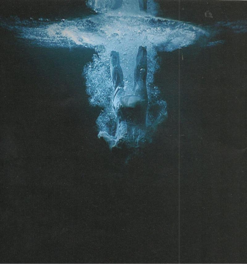 Imatge de Departing Angel (Five Angels for the Milenium) 2001 Bill Viola Foto de Kira Perov