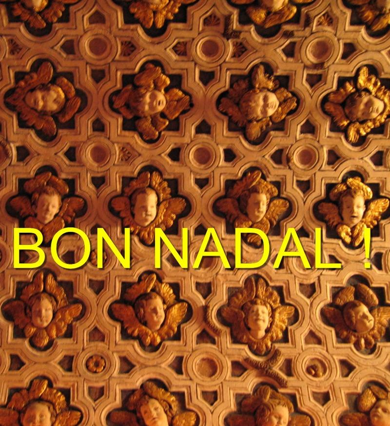 BonNadal2013FB