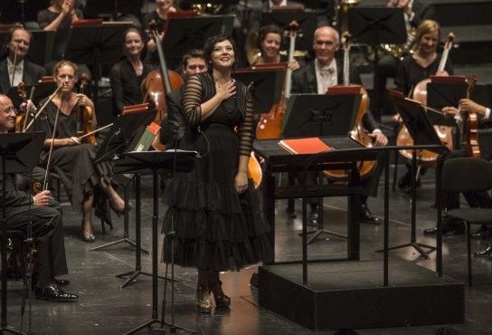Teresa Iervolino, Maffio Orsini